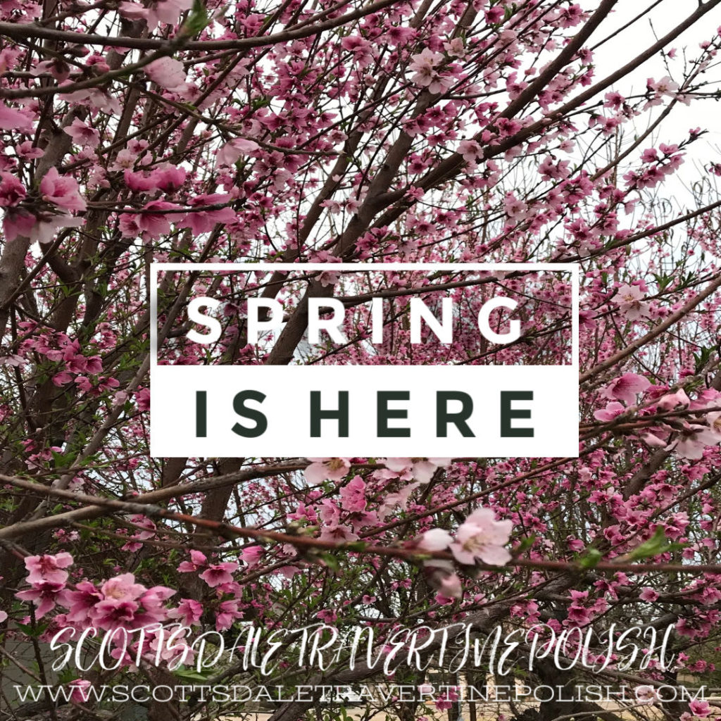 Spring Is Here Y'all!
